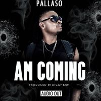 Am coming - Pallaso