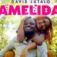 Amelida - David Lutalo