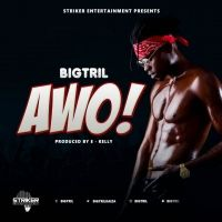 Awo - Big Trill