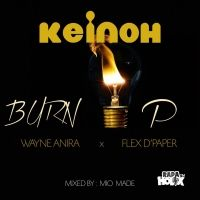 Burn Up - Keinoh ft Wayne Anira & Flex DPaper