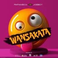 Wansakata - Fik Fameica & Joeboy