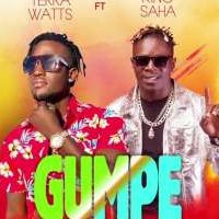 Gumpe - Terra Watts ft King Saha