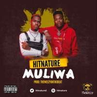 Muliwa - The Hit Nature