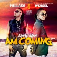 Am Coming (Remix) - Pallaso Ft Weasel