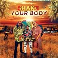 Shake Your Body - DeeWone, Geosteady & Navio